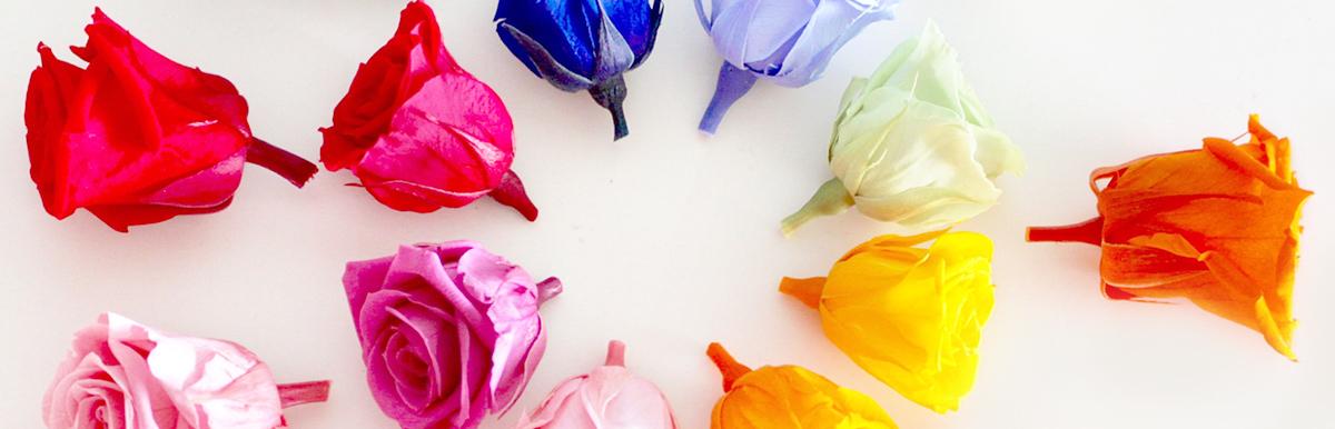 あなた色*自愛の扉をひらく  あなたのココロを咲かせる  フラワリーカウンセリング
